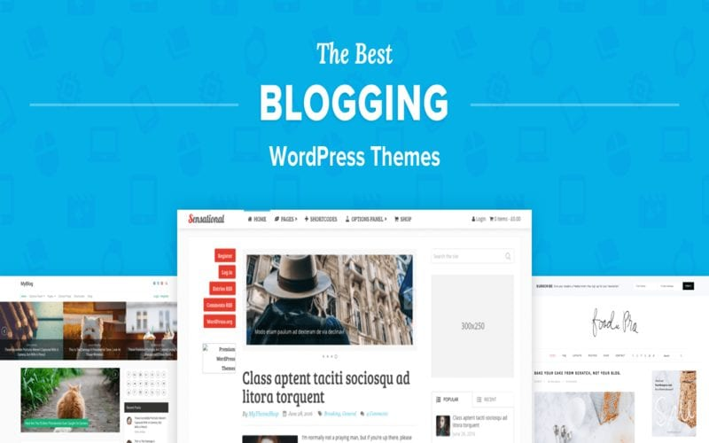 worpress-best-themes